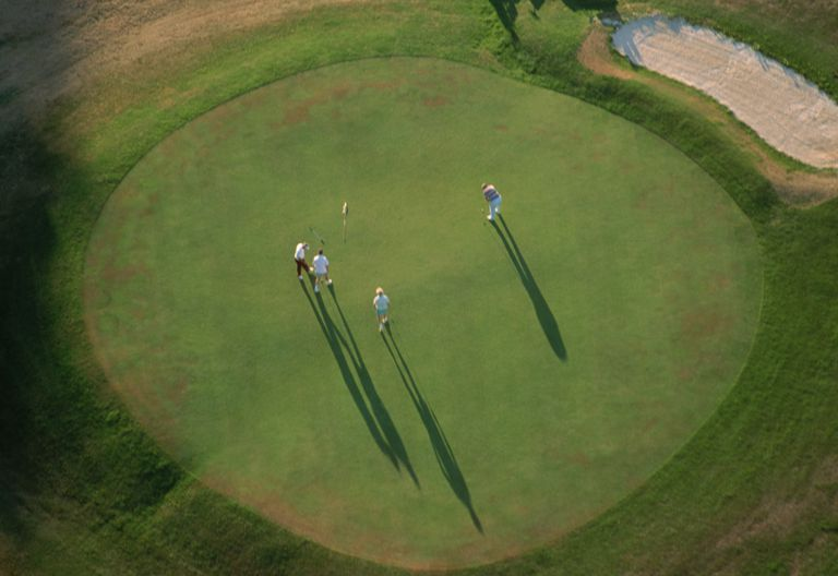 Group of four golfers on a putting green