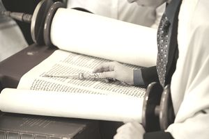 Man reading Torah scrolls