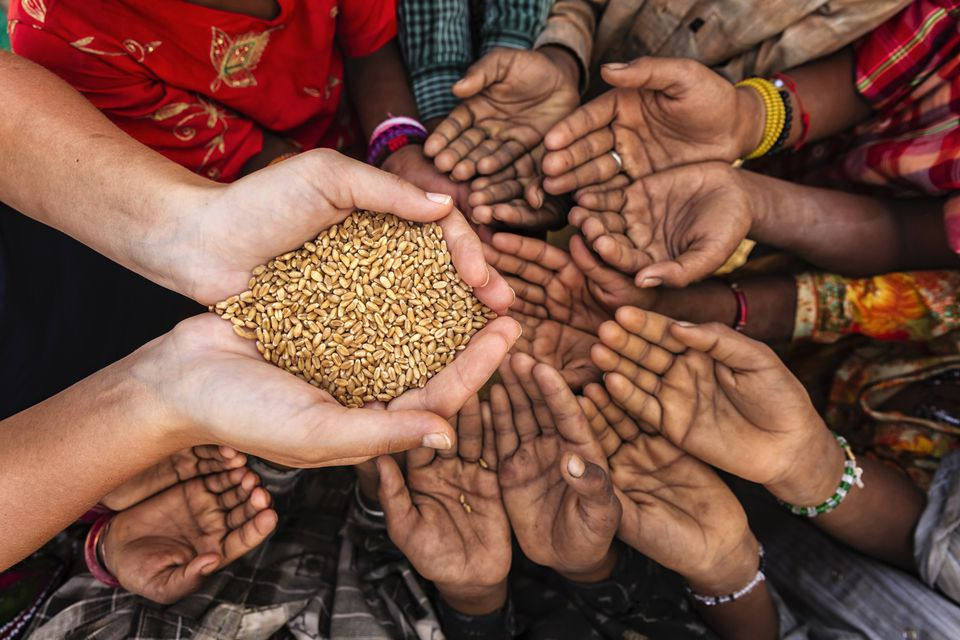 A Useful Guide to Volunteering in Africa Food