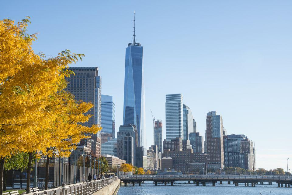 One World Trade Center behind autumnal tree