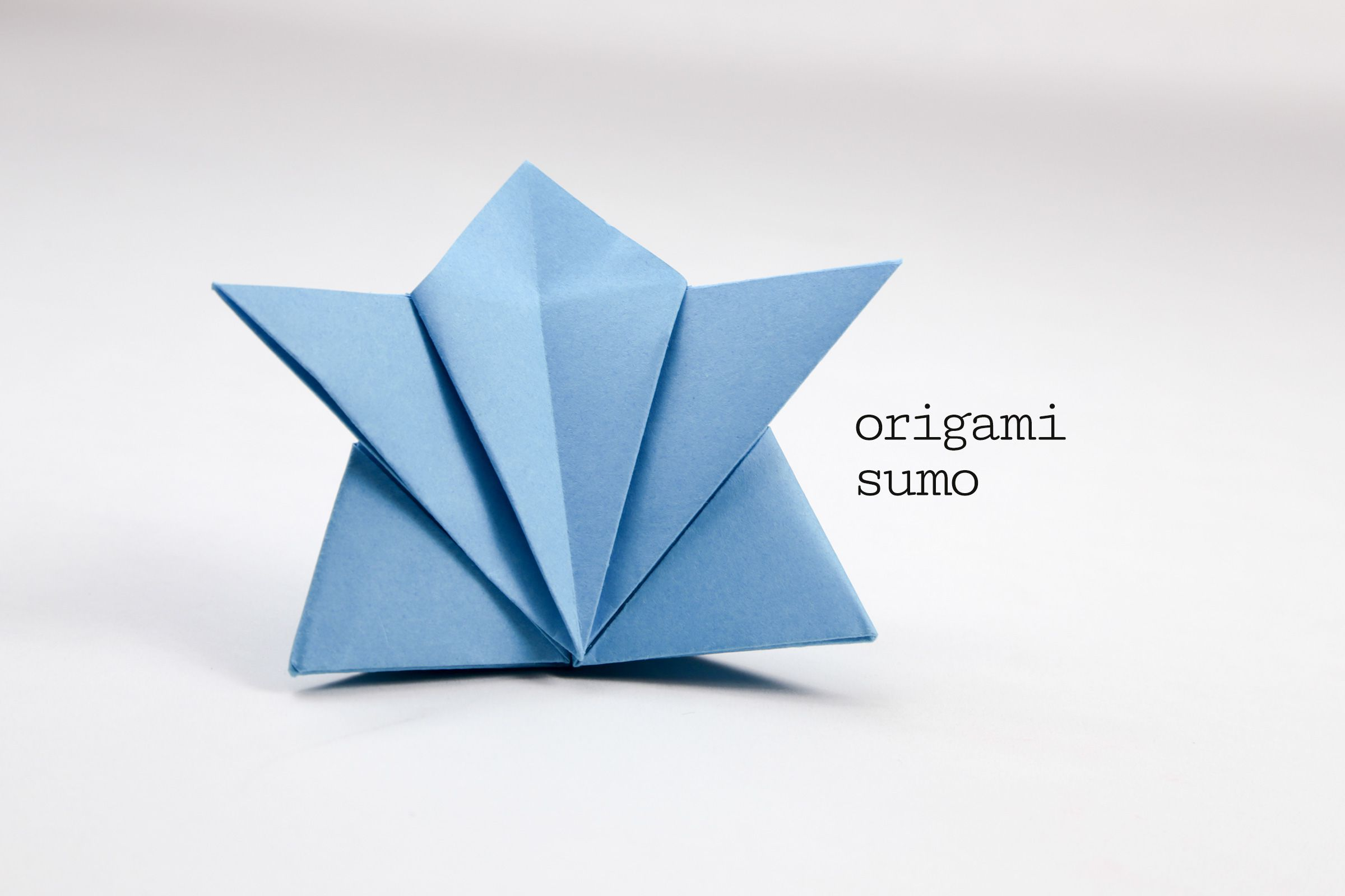 Easy traditional origami turtle instructions traditional origami sumo instructions sciox Choice Image