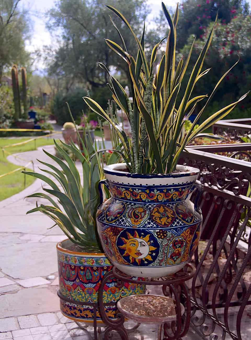 Colorful Garden Pots Successfully grouping plants in pots colorful garden pots workwithnaturefo