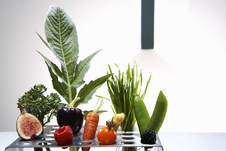 Test tube holder with different vegetables and fruits, studio shot