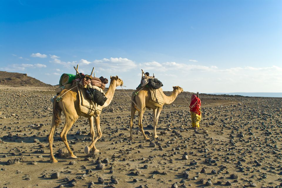 Djibouti Travel Guide Essential Facts and Information