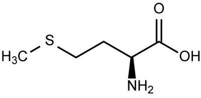 Amino Acids Characteristics and Structures