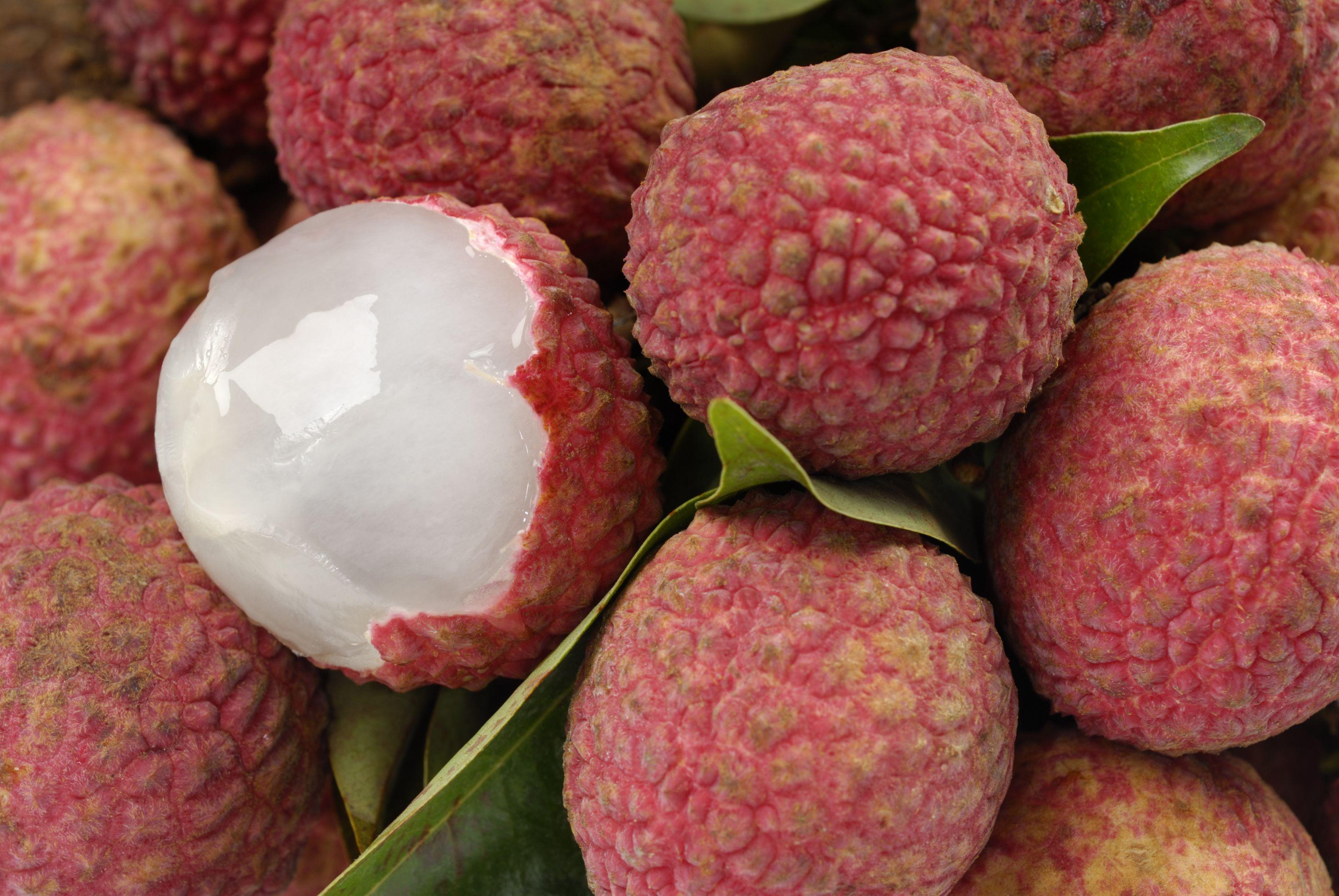 lychees-litchi-chinensis-182479989-58864dfe5f9b58bdb39112f6.jpg