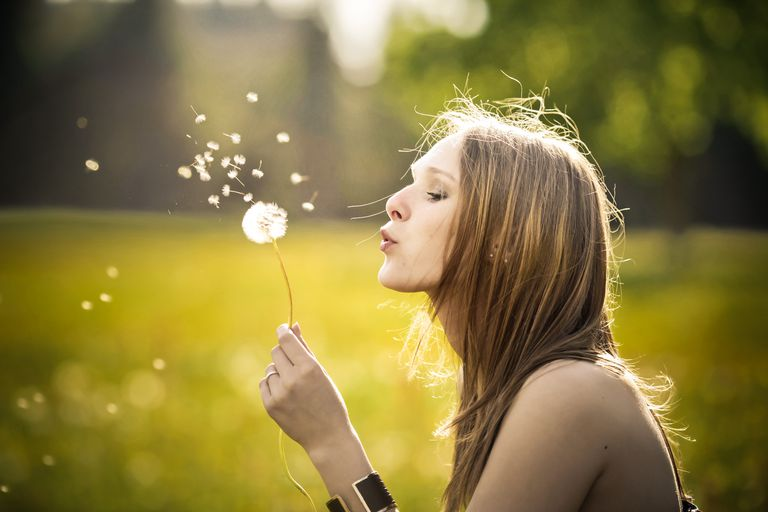 Dandelion blow ball