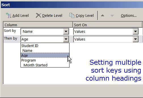 Setting Multiple Sort Keys in the Excel Sort Dialog Box
