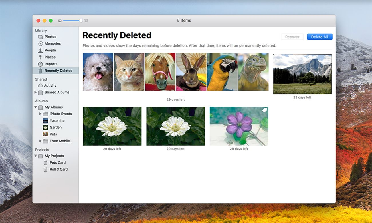 Deleting images in the Photos app.