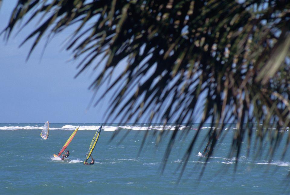 Windsurfing off of Cabarete