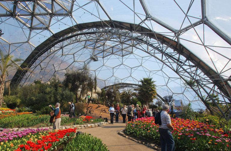 Inside the Eden Project, pathways and gardens in bloom