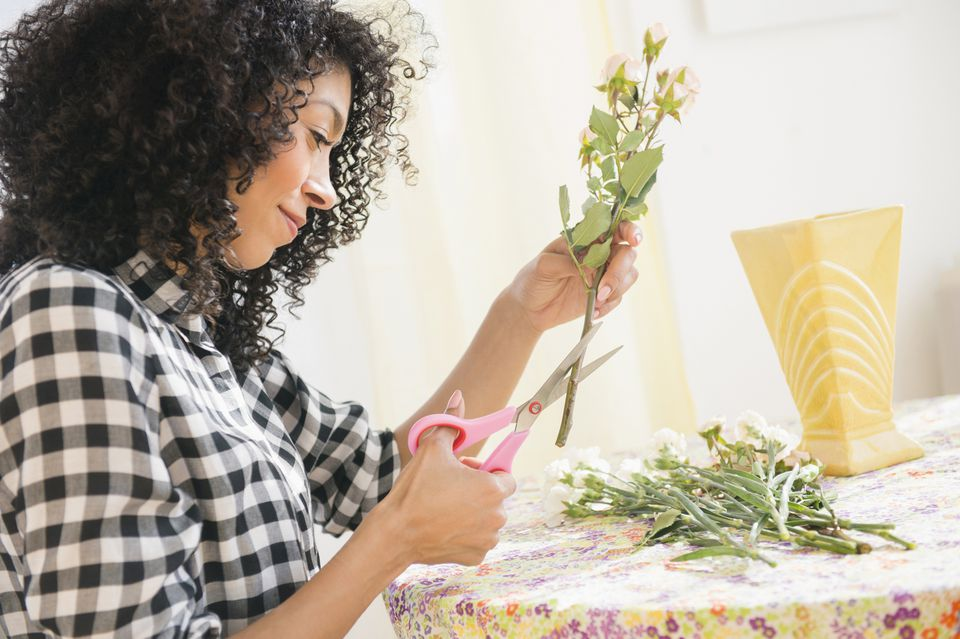 Woman Cutting Roses for Display
