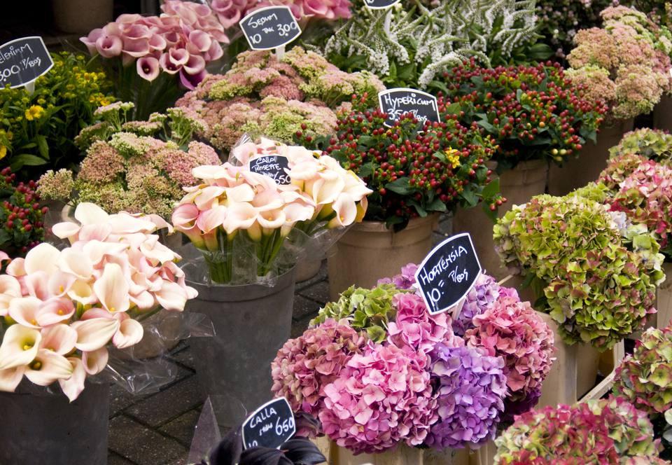 Wedding flower availability by season spring wedding flowers in season junglespirit Choice Image