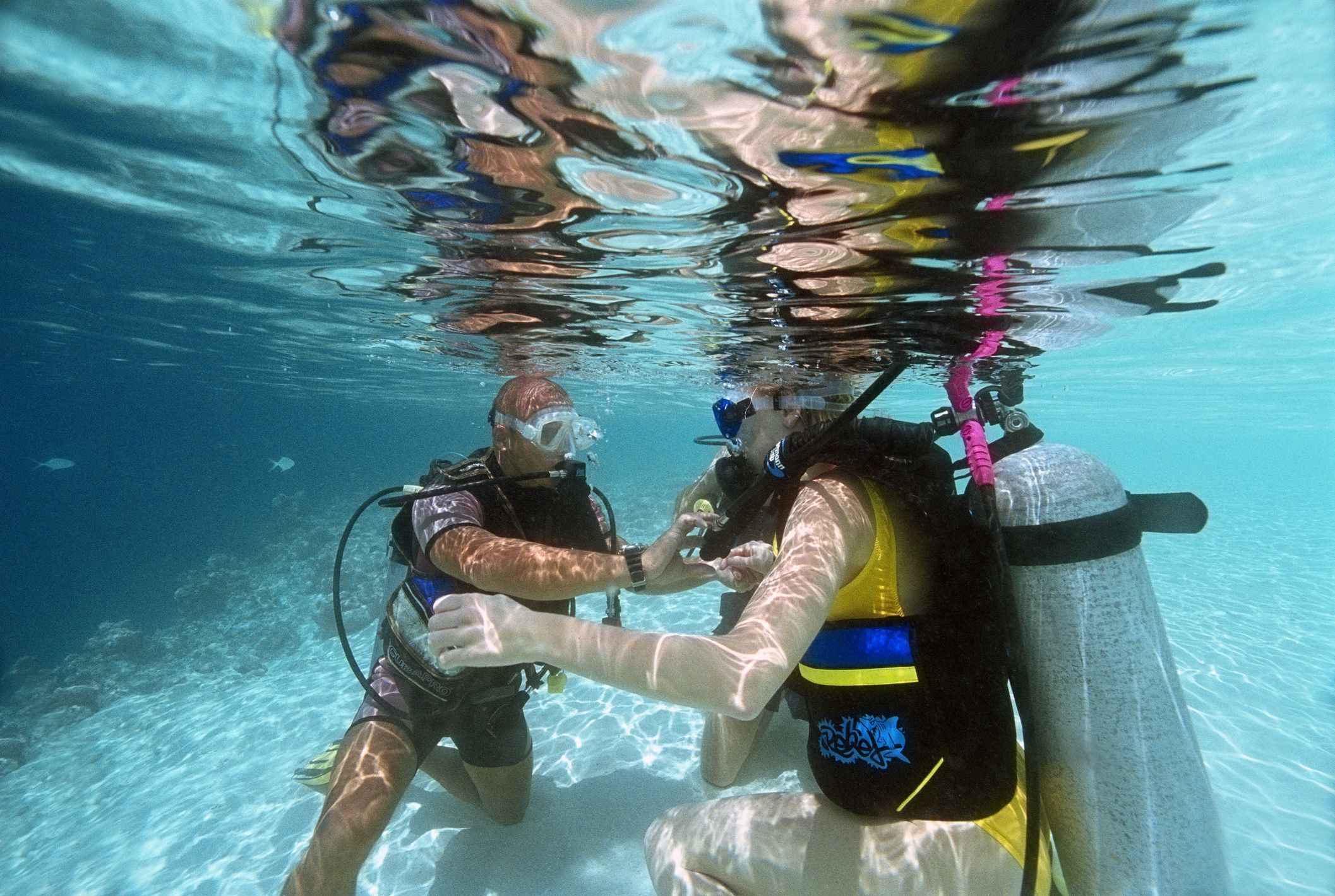 Where to go scuba diving and snorkeling in aquariums the worlds cheapest places to get scuba certified xflitez Choice Image