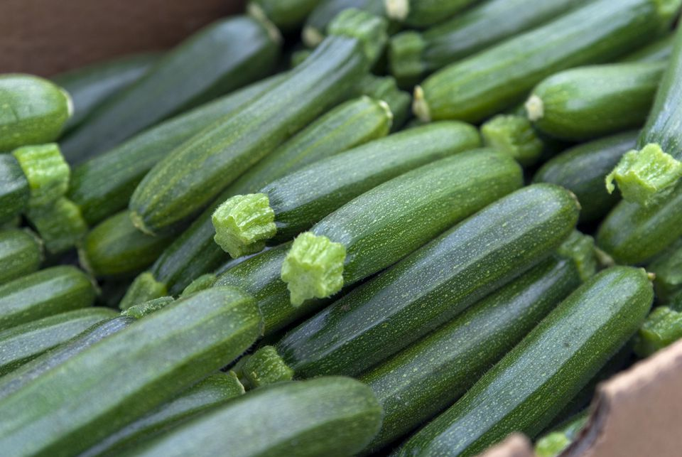 Organic Zucchini, Vegetables at Farmer's Market: Healthy Eating