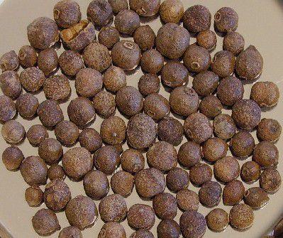 Allspice berries © Jim Stanfield