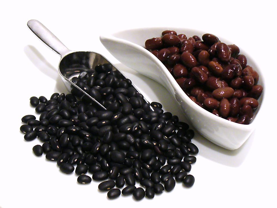 black beans selection storage recipes freeze legume vegetable recipes receipts