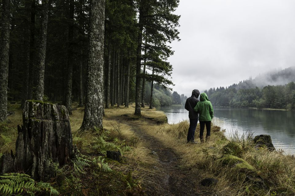 Couple looks out over a misty lake in a forest.