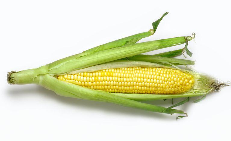 Corn Allergies