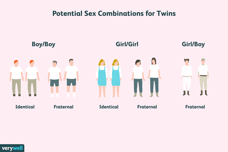 sex combinations for twins
