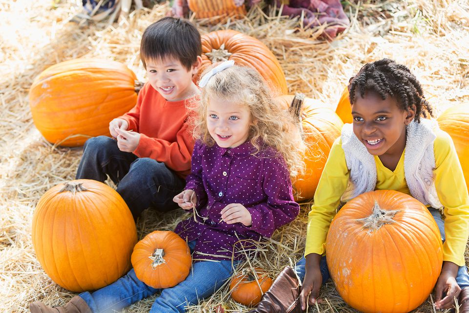 Three multi-ethnic children playing in pumpkin patch