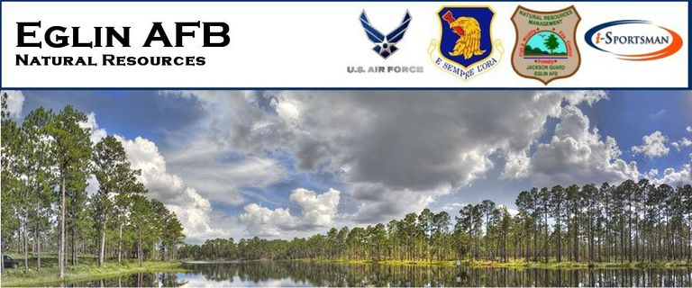 eglin afb singles dating site The eglin air force base newcomers guide contains extensive information about eglin afb provided by the public affairs office including: in processing, lodgin, housing, support & family services, medical, education, base history, units & associate unit information, base maps and quick reference phone numbers.