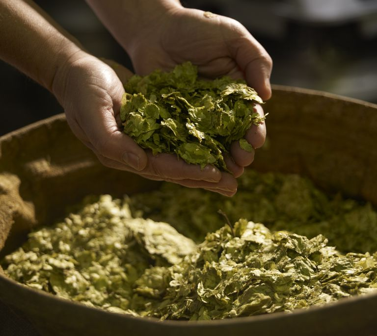 A handful of hops.