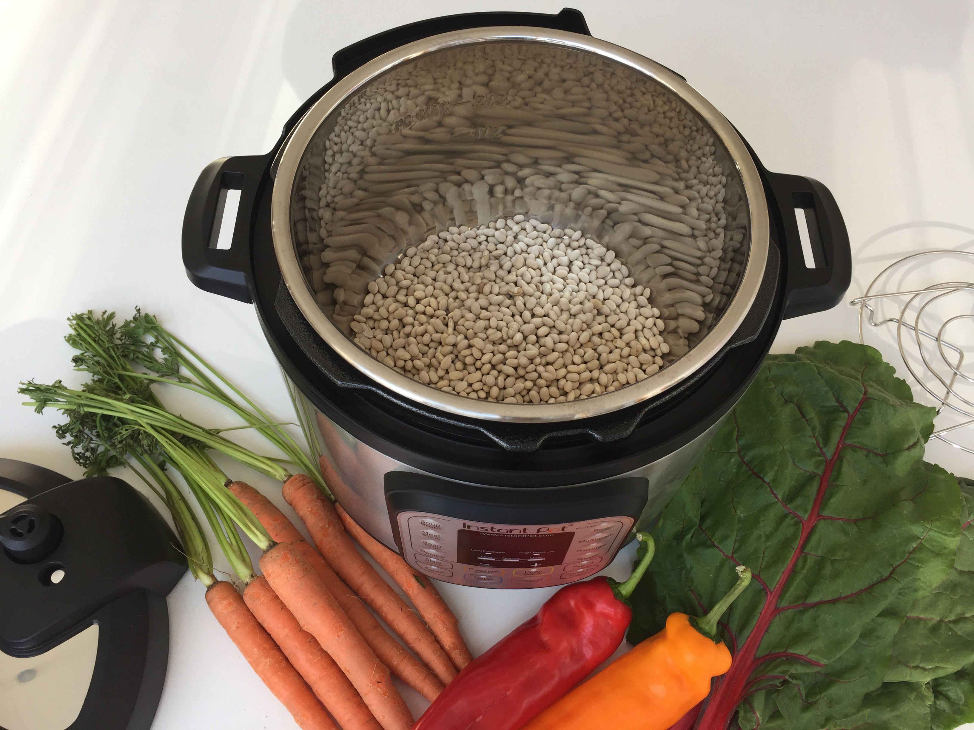 Instant Pot - cover