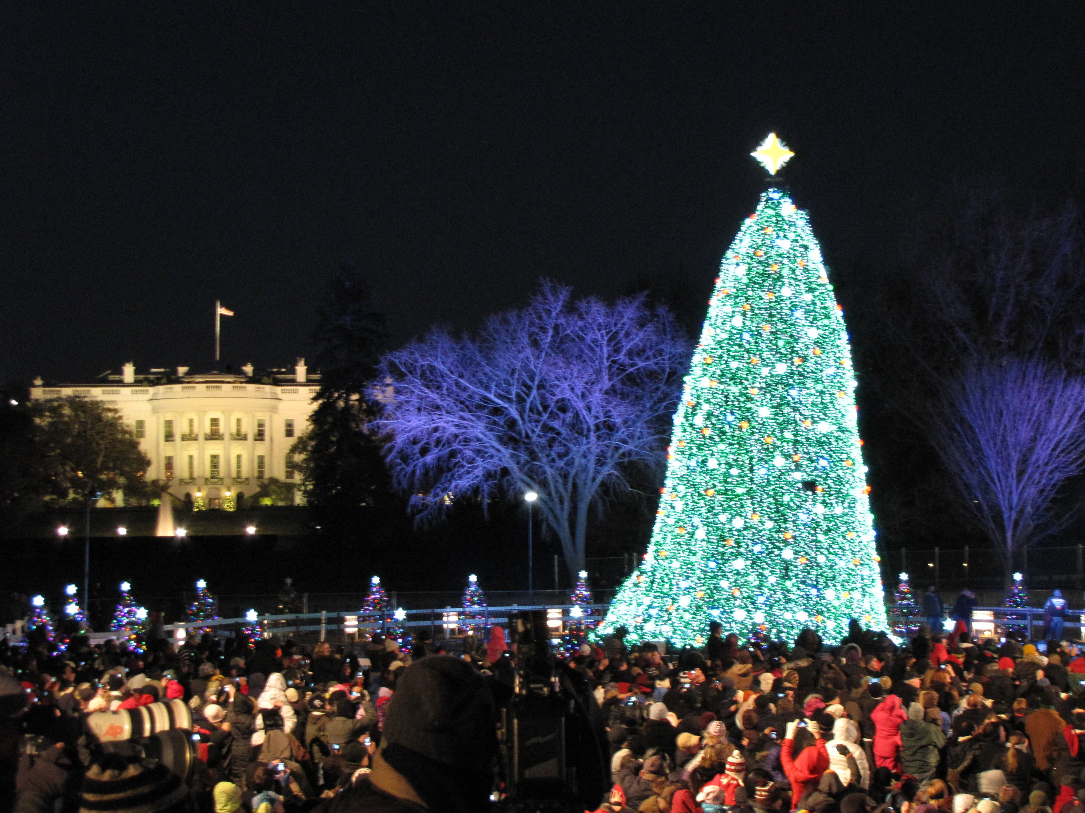 attend dozens of christmas tree lighting ceremonies near washington dc - Christmas Tree Lighting