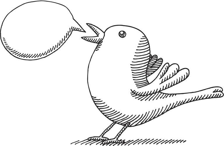 Twitter Bird Illustration