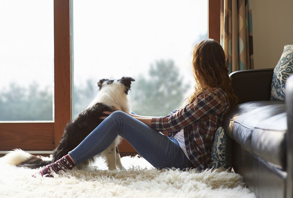 Woman and dog sitting on furry rug, looking out window