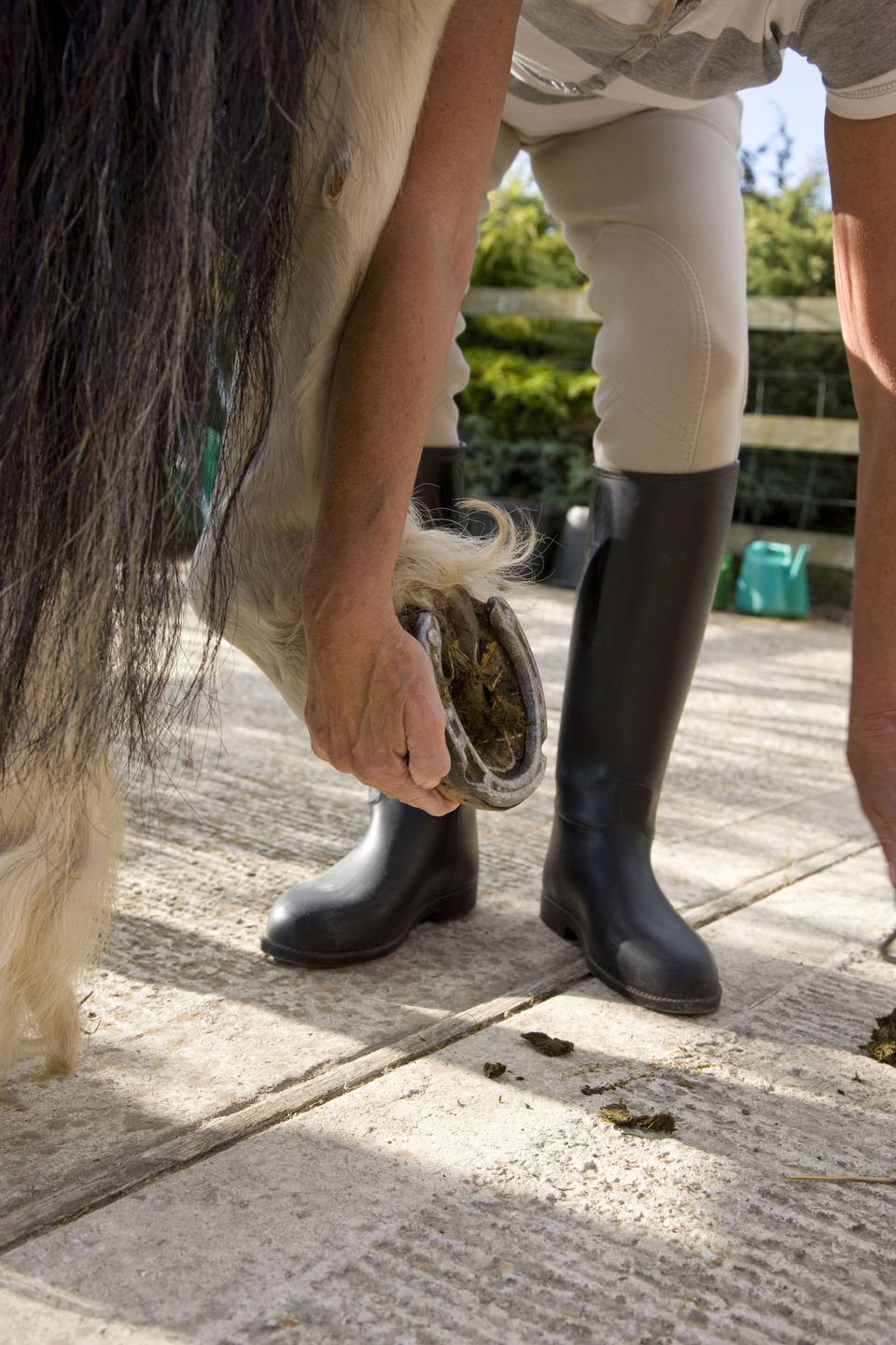 Woman crouching and holding a horse hoof