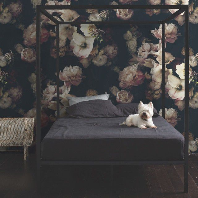 dark floral wallpaper in bedroom