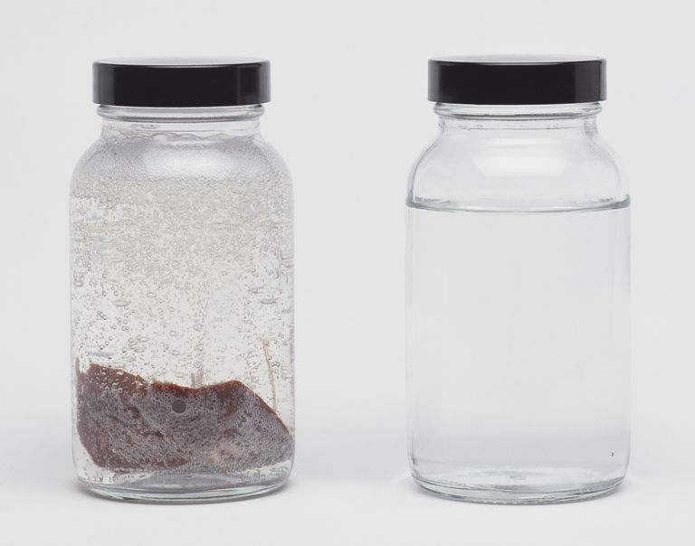 One bottle of hydrogen peroxide with a piece of liver in it and one bottle of plain hydrogen peroxided