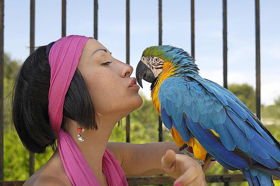 Woman being affectionate with her pet parrot
