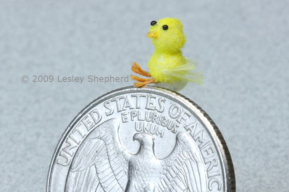 A 1:12 scale dolls house chick is only 6mm tall. Shown on a quarter coin for scale.