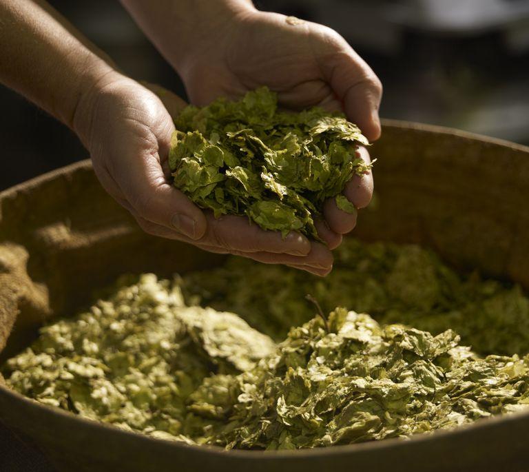 A handful of hops.