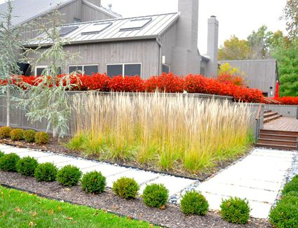 Landscaping Ideas & Inspiration