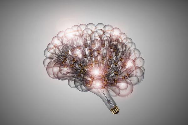 Brain representing human intelligence