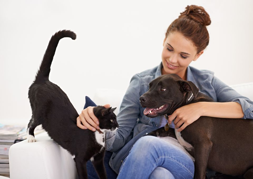 woman cuddling cat and dog on couch
