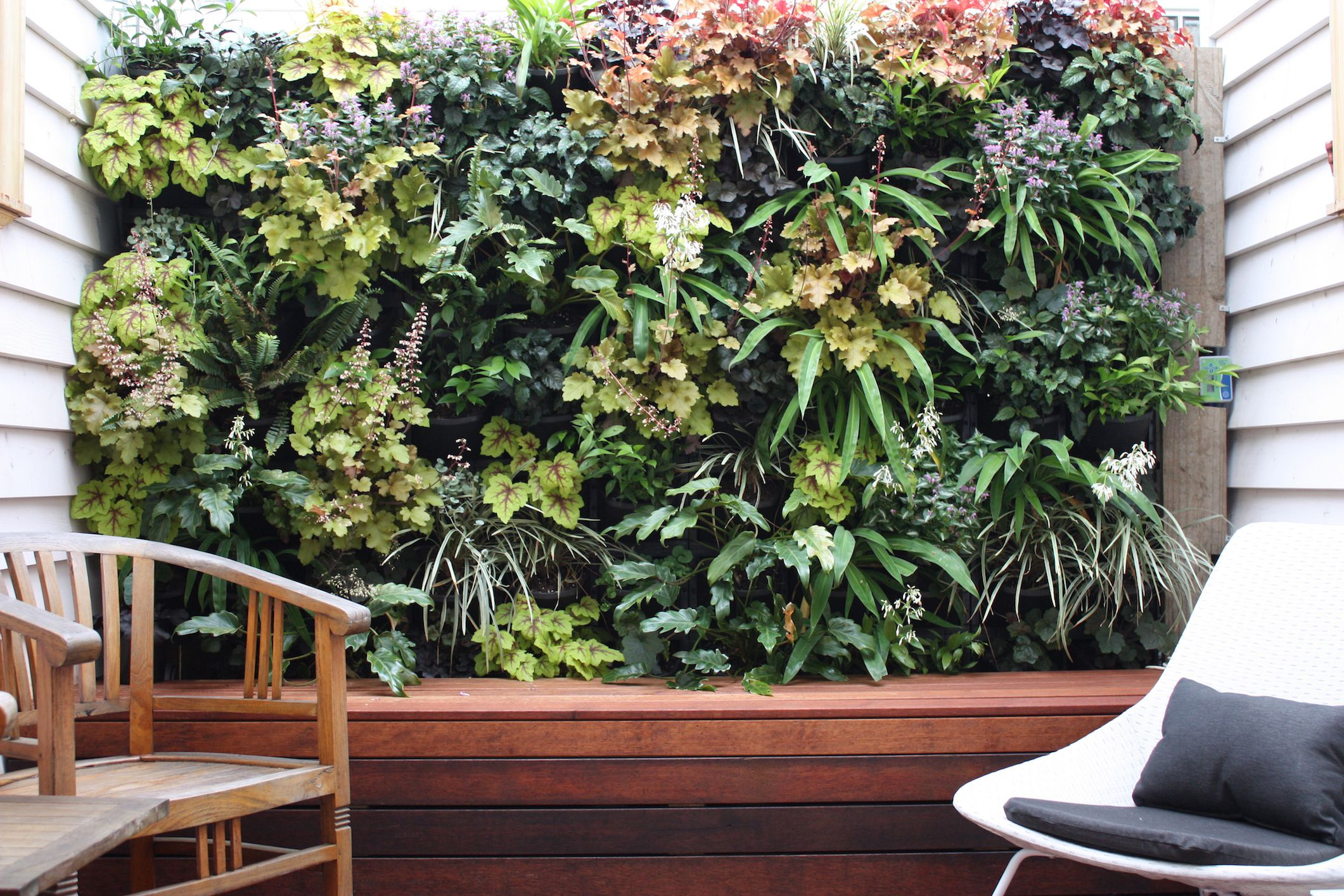 Create Good Feng Shui with Vertical Wall Gardens. Bedroom Feng Shui