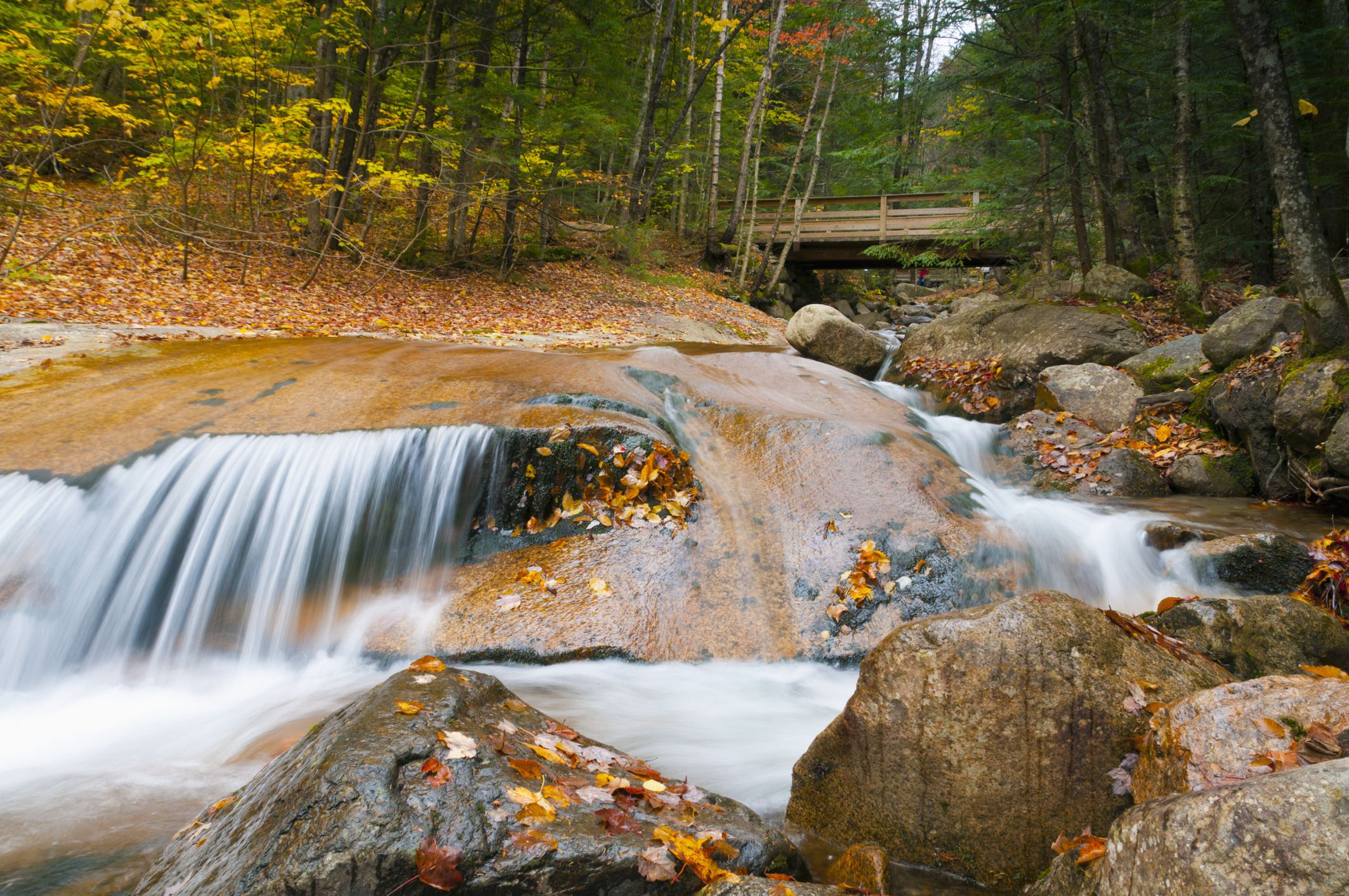 5 New Hampshire Rv Parks You Must Visit