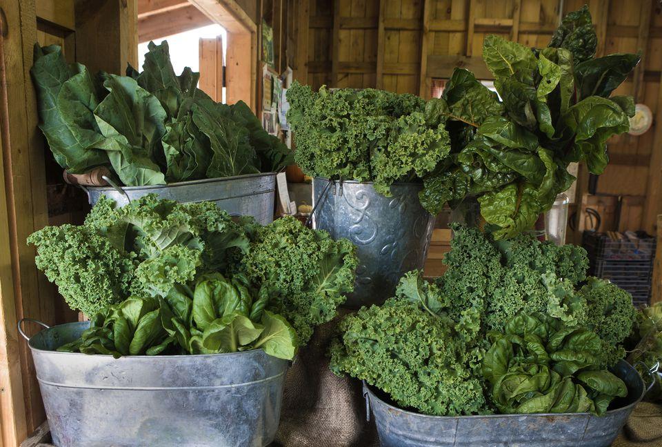 Greens at the Market