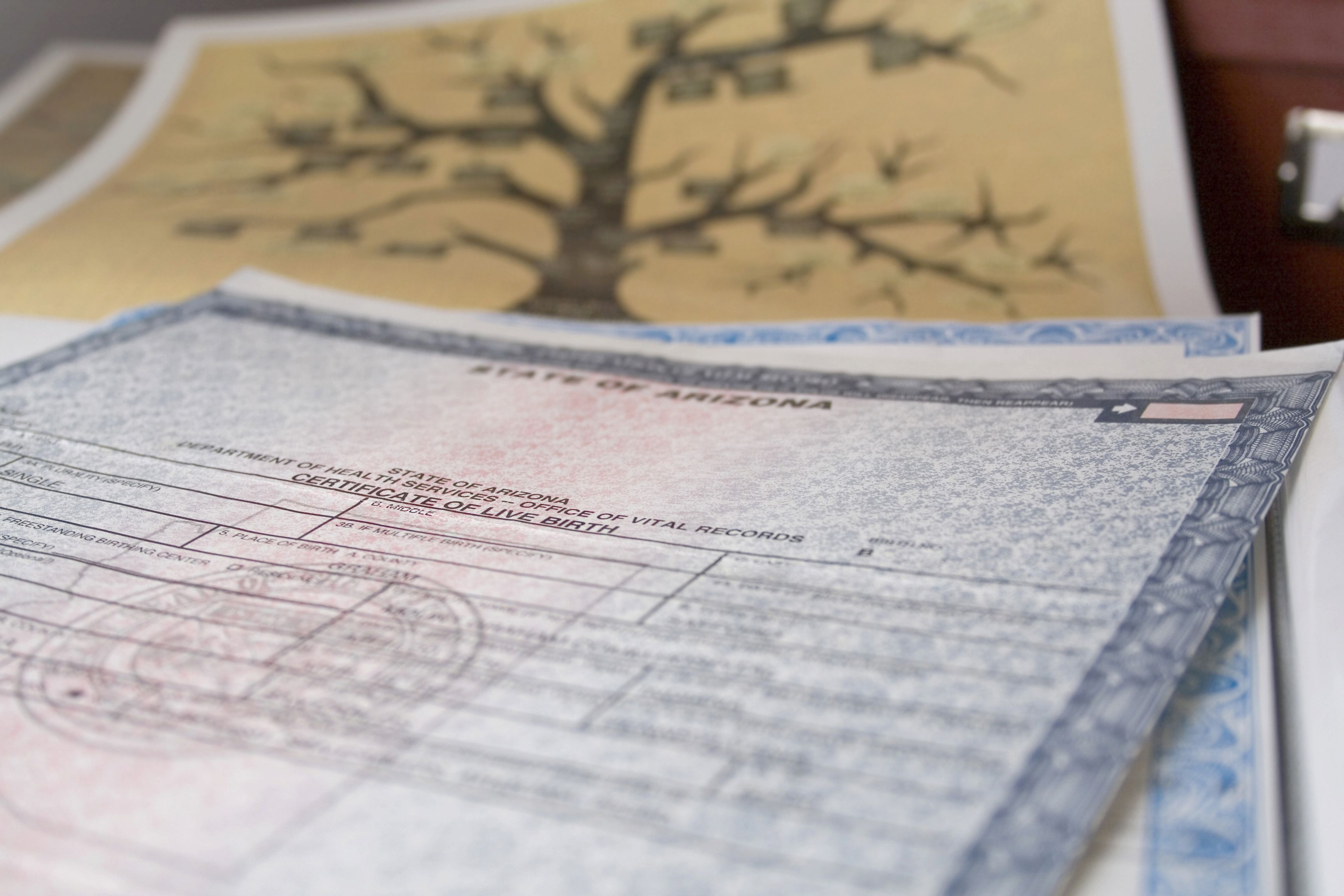 Birth certificate requirements for us passports 1betcityfo Image collections