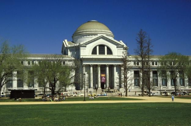 National Museum of Natural History, photo courtesy of the Smithsonian.