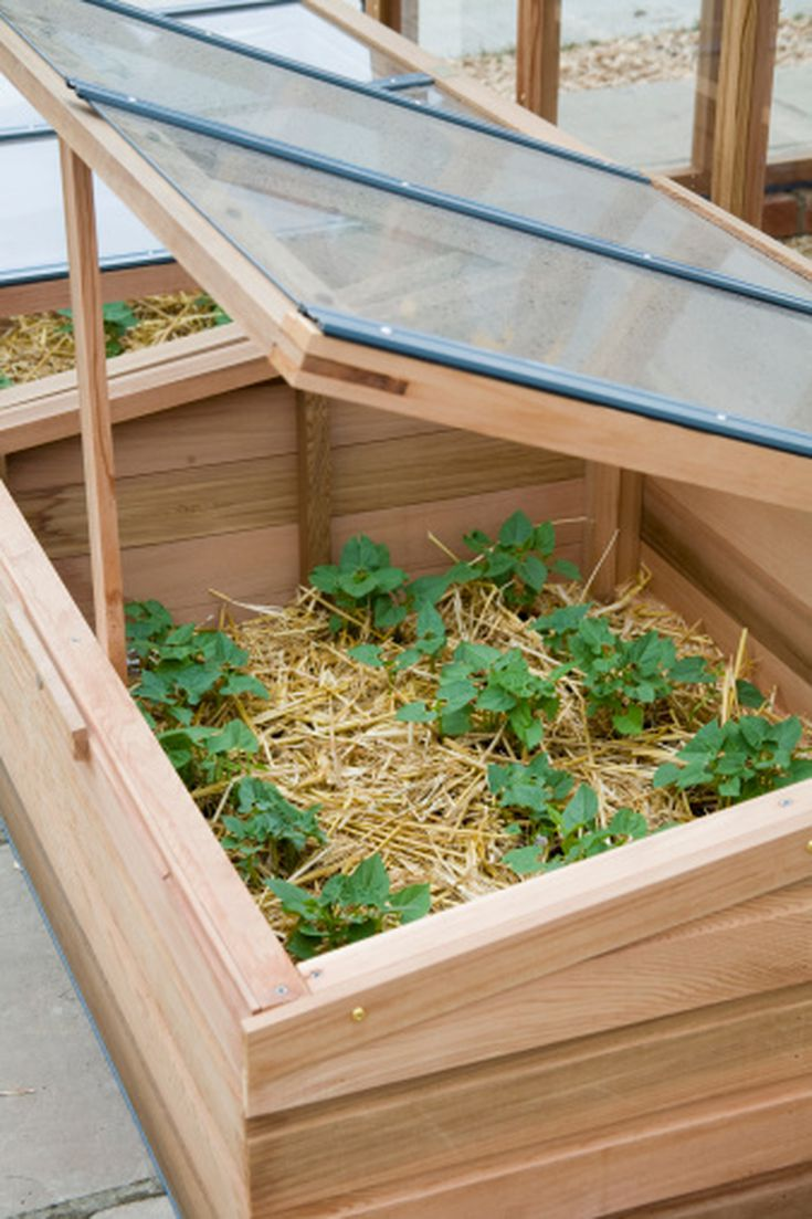 Use Cold Frames in the Flower Garden