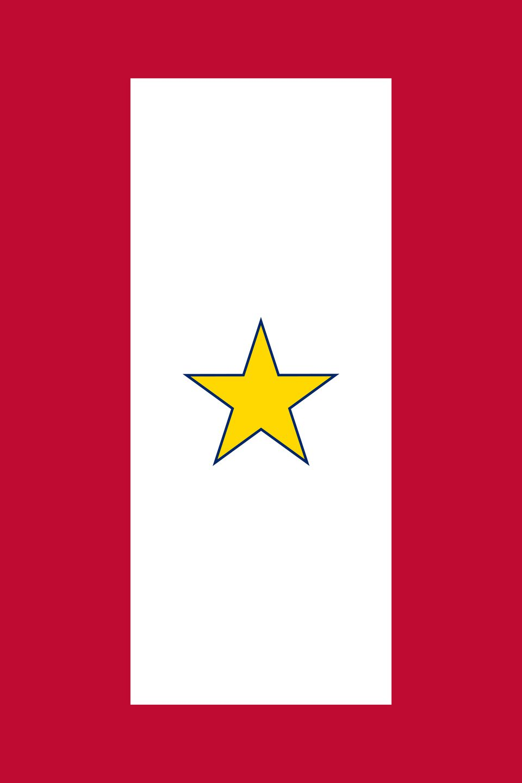 Gold Star Service Banner
