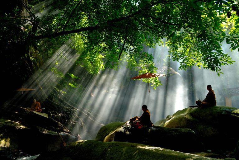 monks-in-sunlight.jpg