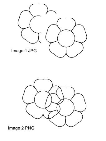 JPG and PNG Comparison