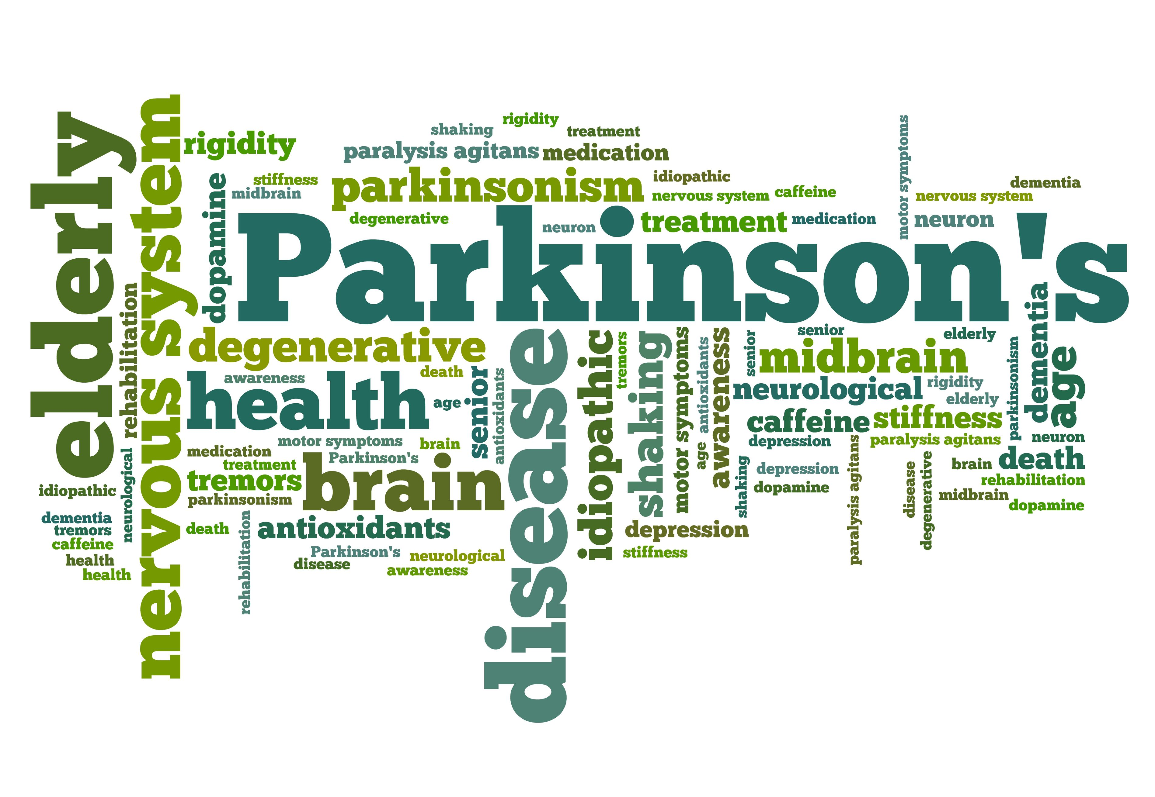 The Basics of Parkinson's Disease